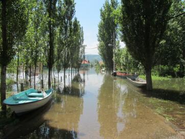 Árad a Duna - A cikkhez tartozó kép