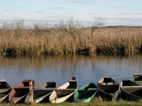 A hétköznapi életben is tehetünk a vizes élőhelyek megőrzéséért - A cikkhez  tartozó kép 7bb26c92f8