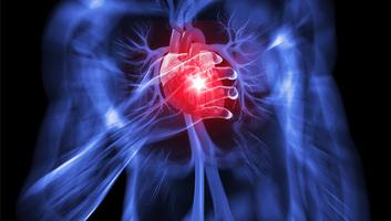 Szerbiában a szív- és érrendszeri betegségek szedik a legtöbb áldozatot - illusztráció