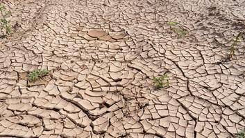 Elsivatagosodás: 2050-re a világ termőtalajainak 90 százaléka lesz érintett - illusztráció