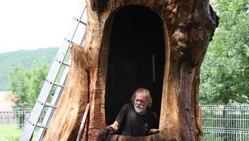 Kétszemélyes kápolnává alakítják Mikes Kelemen kiszáradt zágoni tölgyfáját - illusztráció