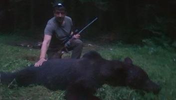 Kilőtték az egyik veszélyes medvét Tusnádfürdőn - illusztráció