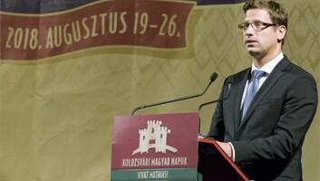 Gulyás: Magyarország erős és sikeres szomszédos államokban érdekelt - illusztráció