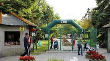 Új lakók a Palicsi Állatkertben - illusztráció