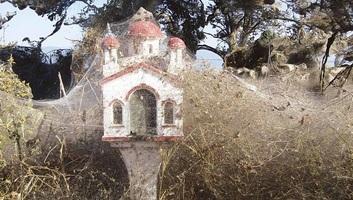 Több százezer pók hálózta be egy görög tó partját - illusztráció