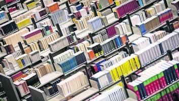 Kétezer eurós könyvtári bírság másfél hónapos késésért - illusztráció