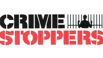 Crime Stoppers: Decembertől Szerbiában is működik a bűncselekmények bejelentésére szolgáló applikáció - illusztráció