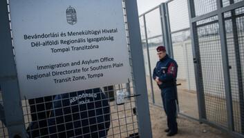 Megszakították magyarországi látogatásukat az ENSZ szakértői - illusztráció