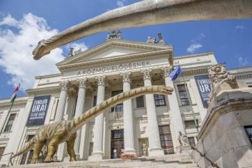 Szeged: Már több mint kilencvenezren látták a Móra-múzeum dinoszauruszkiállítását - A cikkhez tartozó kép