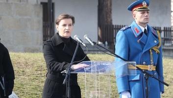 Kifütyülték Brnabićot az orašaci koszorúzáson - illusztráció