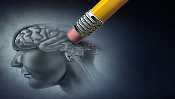 Károsodott idegsejteket javítottak ki két állatkísérletben - illusztráció
