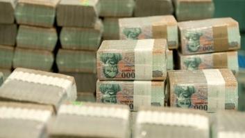 Magyarország: Januárban az államháztartás többlete meghaladta a beérkezett uniós bevételek összegét - illusztráció