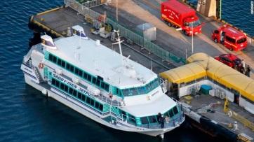 Valamilyen tengeri állattal ütközött egy japán hajó, legalább 80-an megsérültek - A cikkhez tartozó kép