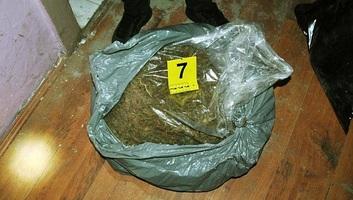 Újvidék: 27 kilogramm marihuánát foglalt le a rendőrség - illusztráció