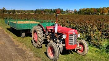 Eltörlik a traktorok kötelező újra regisztrációját - illusztráció