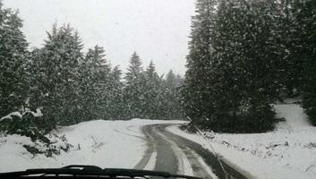 Havazik Hargita megye hegyvidékén - illusztráció