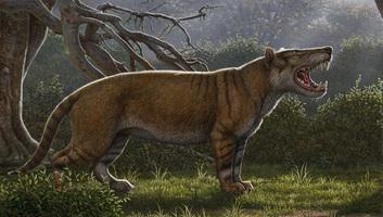 Egy gigantikus, az oroszlánnál hétszer nagyobb termetű ragadozó fosszíliájára bukkantak - illusztráció