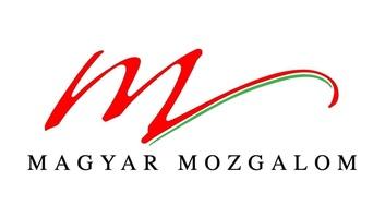 A MM mélységesen elítéli a belgrádi vandál cselekedetet - illusztráció