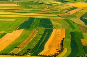 A fiatal szerbiai termelők földvásárlásra kaphatnak kedvező hiteleket - A cikkhez tartozó kép