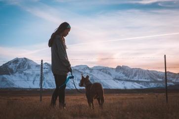 Az ember génjeitől is függ, hogy kutyatulajdonos lesz-e - A cikkhez tartozó kép