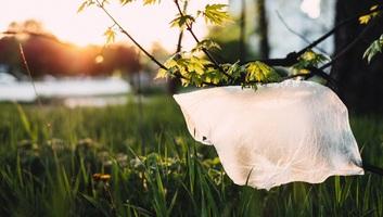 Az otthoni környezetvédelem 8 pontja - illusztráció