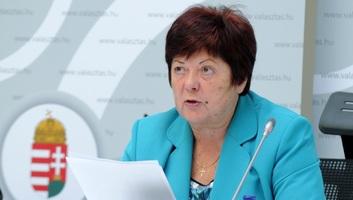 NVI: Vasárnap este 11 óráig nem lehet nyilvánosságra hozni hivatalos adatokat az EP-választásról - illusztráció