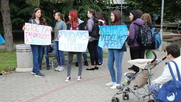 Topolyai diákok is csatlakoztak a Péntekenként a jövőért elnevezésű nemzetközi mozgalomhoz - illusztráció