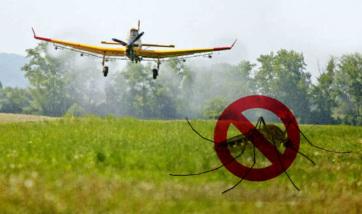 Szúnyogirtás Óbecsén - A cikkhez tartozó kép