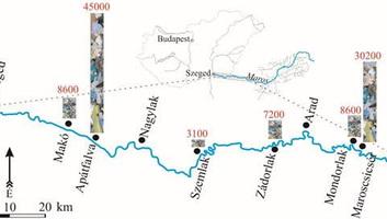 SZTE: Jelentős mennyiségű mikroműanyag szennyeződés lehet a magyarországi folyókban - illusztráció