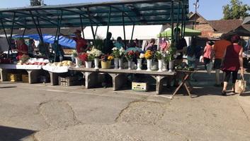 Felújítják az óbecsei belvárosi piacot - illusztráció