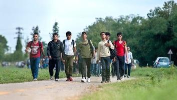 Félszáz migránst és egy szerb embercsempészt tartóztattak föl Csongrád megyében - illusztráció