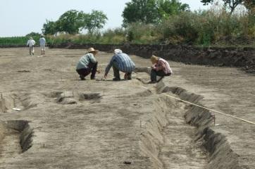 Avar kori sírokat találtak Móra Ferenc egykori ásatási területén Szegeden - A cikkhez tartozó kép