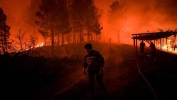 Erdőtüzek pusztítanak Portugáliában - A cikkhez tartozó kép