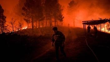 Erdőtüzek pusztítanak Portugáliában - illusztráció