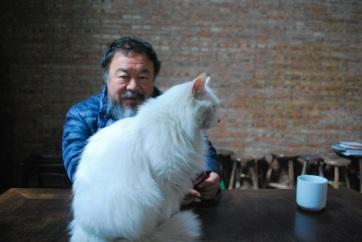 Távozik Németországból Aj Vej-vej kínai ellenzéki művész - A cikkhez tartozó kép