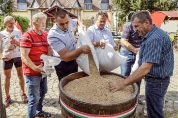 Zakarpatska Ukrajina: Sakupljena pšenica koju su darovali mađarski seljaci - A cikkhez tartozó kép