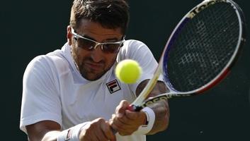 Tenisz: Janko Tipsarević bejelentette visszavonulását - illusztráció
