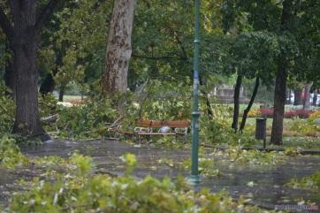 Ítéletidő pusztított Szegeden: sérültjei is vannak a viharnak - A cikkhez tartozó kép
