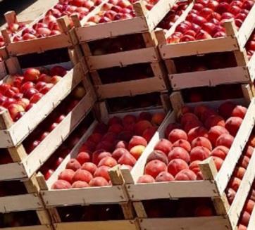 Letartóztatások Szabadkán: Görögországból behozott gyümölcsöt adtak el hazaiként az oroszoknak - A cikkhez tartozó kép