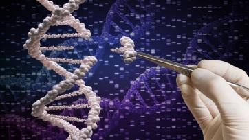 Génszerkesztéssel távolították el a HIV-vírust egy páciensből - A cikkhez tartozó kép