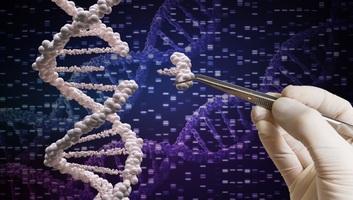 Génszerkesztéssel távolították el a HIV-vírust egy páciensből - illusztráció