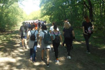 Szabadka: Rekordszámú résztvevő a 2019-es Gyaloglónapon - A cikkhez tartozó kép