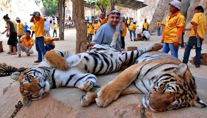 A Tigris-templom, vagyis a Wat Pha Luang Ta Bua