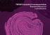 Láthatóvá tették a rejtőzködő rákos sejteket az immunrendszer számára a Yale kutatói - illusztráció
