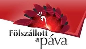 Az első élő adással folytatódik a Fölszállott a páva pénteken - illusztráció