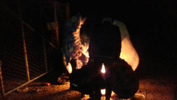 Négy migráns eltűnt a Dunában Apatinnál - illusztráció