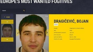 Újvidéken fogták el Európa egyik legkeresettebb bűnözőjét - illusztráció