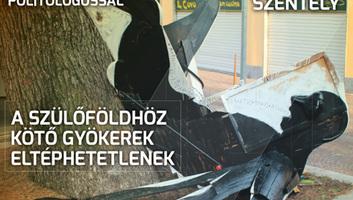 Hét Nap (november 20.): Balkániak a kispadra! - illusztráció