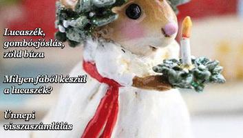 Jó Pajtás (december 12.):  Milyen csodákat ígér a december? - illusztráció