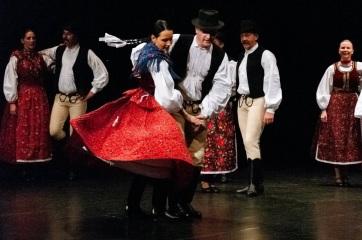 Bukovinaiak és góbék, színpadra! - A cikkhez tartozó kép